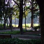 御堂筋の公園